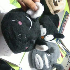gato negro pantufla